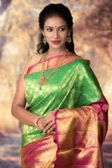 woman in a and exquisite silk saree
