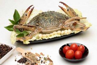 large_crab.jpg